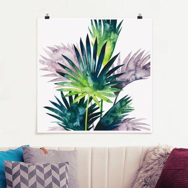 Poster - Exotisches Blattwerk - Fächerpalme - Quadrat 1:1