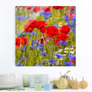 Glasbild - Sommerwiese mit Mohn und Kornblumen - Quadrat 1:1