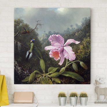Leinwandbild - Martin Johnson Heade - Stillleben mit Orchidee und zwei Kolibris - Quadrat 1:1