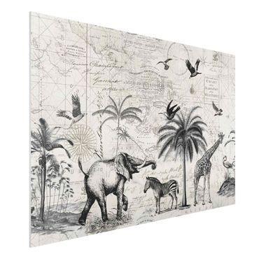 Forex Fine Art Print - Vintage Collage - Exotische Landkarte - Querformat 2:3