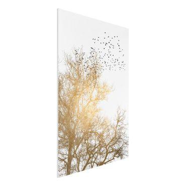 Forex Fine Art Print - Vogelschwarm vor goldenem Baum - Hochformat 3:2