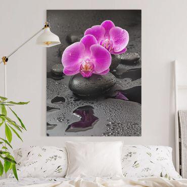Leinwandbild - Pinke Orchideenblüten auf Steinen mit Tropfen - Hochformat 4:3