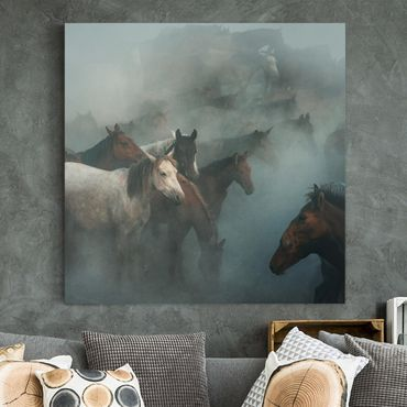 Leinwandbild - Wilde Pferde - Quadrat 1:1