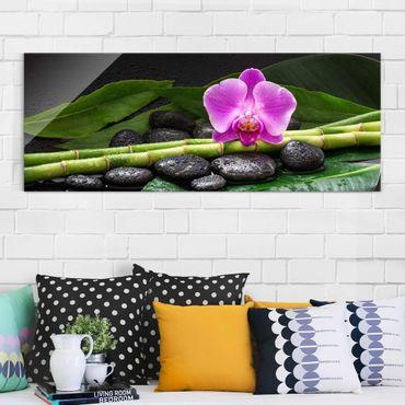 Glasbild - Grüner Bambus mit Orchideenblüte - Panorama