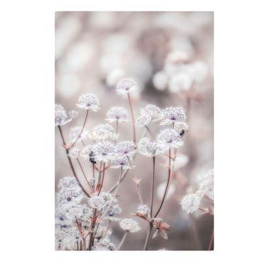 Leinwandbild - Federleichte Wildblumen - Querformat 2:3