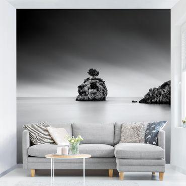 Fototapete - Felseninsel im Meer Schwarz-Weiß