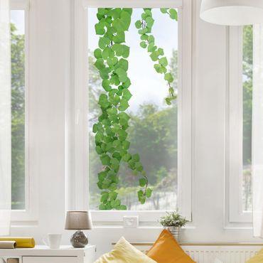 Fensterfolie Fenstersticker - Herzförmige Blätter Ranke - Fensterbild