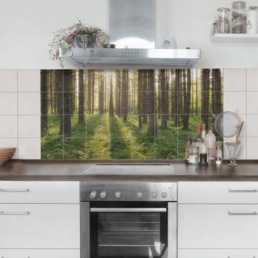 Fliesenbild - Sonnenstrahlen im Grünem Wald
