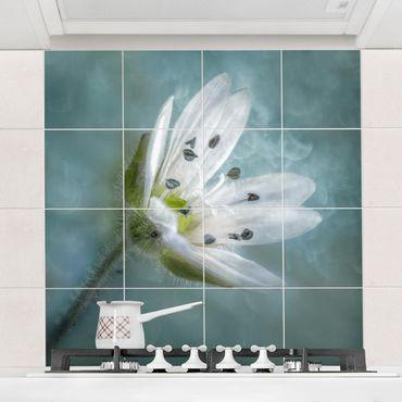 Fliesenbild - Weiße Blüte auf blau - Fliesensticker Set quadratisch