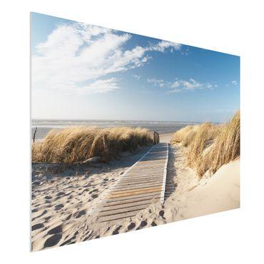 Forexbild - Ostsee Strand