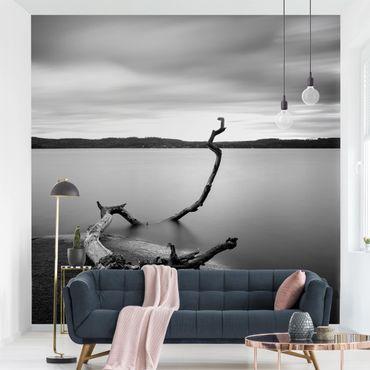 Fototapete - Sonnenuntergang am See schwarz-weiß