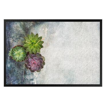 Fußmatte - Drei Sukkulenten