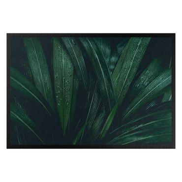 Fußmatte - Dschungel