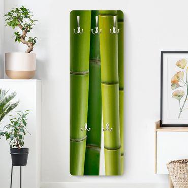 Garderobe - Bambuspflanzen - Grün
