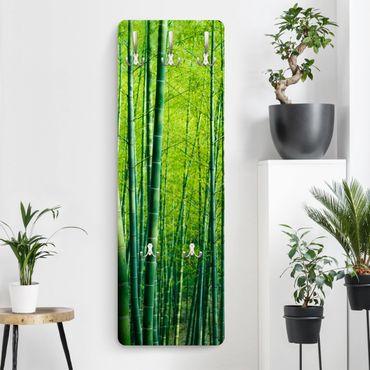 Garderobe - Bambuswald - Grün