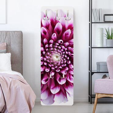 Garderobe Blumen - Aster - Rosa Pink