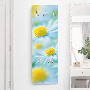 Garderobe Blumen - Daisy - Blau Gelb