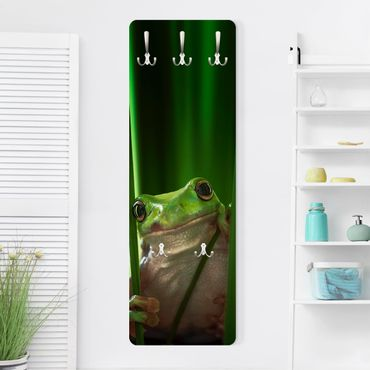 Garderobe - Fröhlicher Frosch