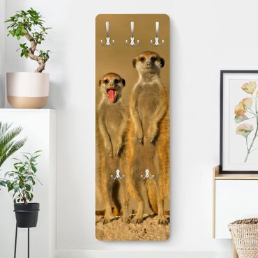 Garderobe - Meerkat Family