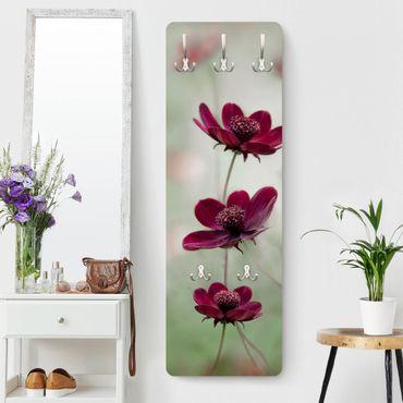 Garderobe - Pinke Kosmeen