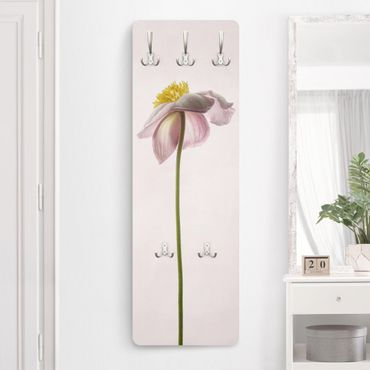 Garderobe - Rosa Anemonenblüten