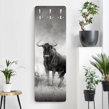 Garderobe - Staring Wildebeest - Schwarz