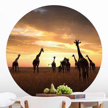 Runde Tapete selbstklebend - Giraffen Familie