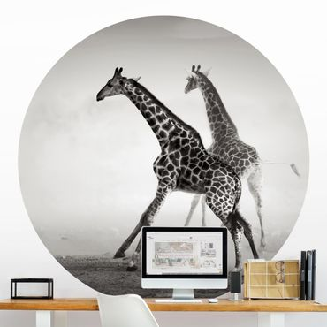 Runde Tapete selbstklebend - Giraffenjagd