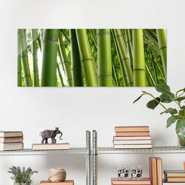 Glasbild - Bamboo Trees No.1 - Panorama Quer