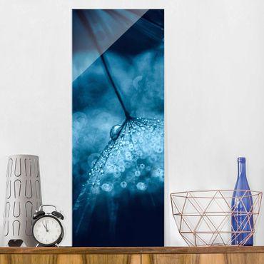 Glasbild - Blaue Pusteblume im Regen - Panel