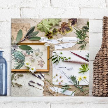 Glasbild - Blumen und Gartenkräuter Vintage - Quadrat 1:1