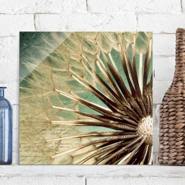 Glasbild - Closer than before - Quadrat 1:1 - Blumenbild Glas