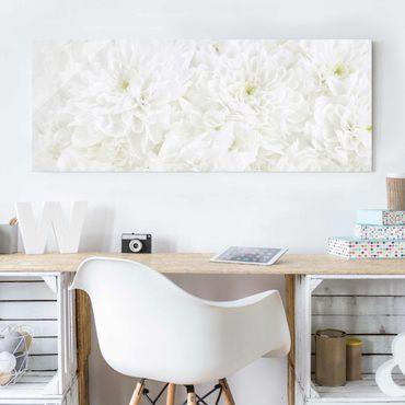 Glasbild - Dahlien Blumenmeer weiß - Panorama Quer