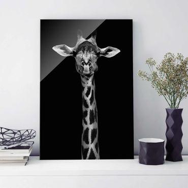 Glasbild - Dunkles Giraffen Portrait - Hochformat 3:2