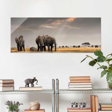 Glasbild - Elefanten der Savanne - Panorama Quer