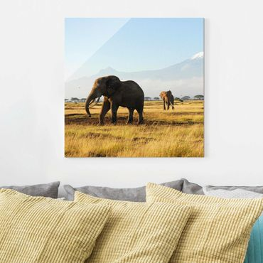 Glasbild Afrika - Elefanten vor dem Kilimanjaro in Kenya - Quadrat 1:1