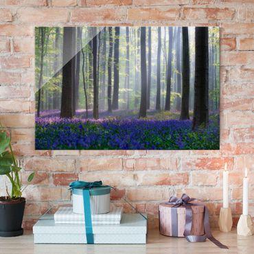 Glasbild - Frühlingstag im Wald - Quer 3:2