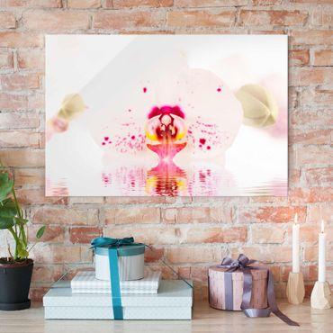 Glasbild - Gepunktete Orchidee auf Wasser - Quer 3:2