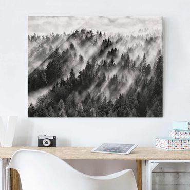 Glasbild - Lichtstrahlen im Nadelwald - Querformat 3:4
