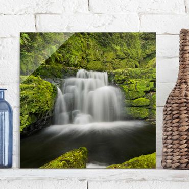 Glasbild - Lower McLean Falls in Neuseeland - Quadrat 1:1