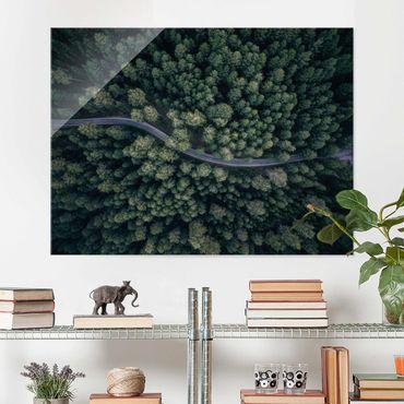 Glasbild - Luftbild - Waldstraße von Oben - Querformat 3:4