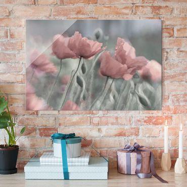 Glasbild - Malerische Mohnblumen - Quer 3:2