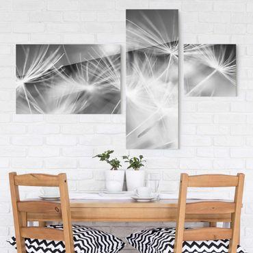 Glasbild mehrteilig - Bewegte Pusteblumen Nahaufnahme auf schwarzem Hintergrund 3-teilig