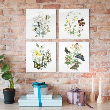 Glasbild mehrteilig - Britische Schmetterlinge Set II - 4-teilig