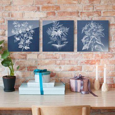Glasbild mehrteilig - Denim Pflanzenstudie Set I - 3-teilig