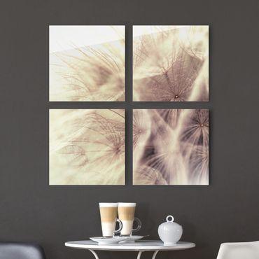 Glasbild mehrteilig - Detailreiche Pusteblumen Makroaufnahme mit Vintage Blur Effekt 4-teilig - Blumenbild Glas