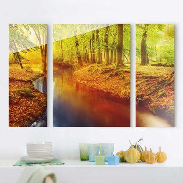 Glasbild mehrteilig - Herbstwald 3-teilig