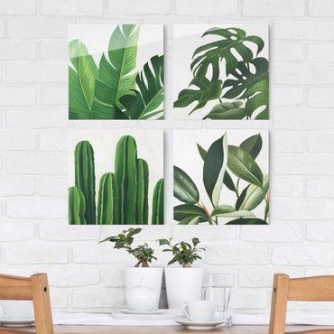 Glasbild mehrteilig - Lieblingspflanzen Tropical Set I - 4-teilig