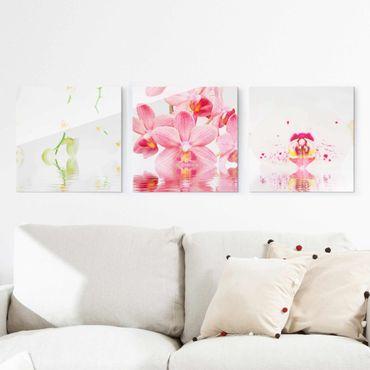 Glasbild mehrteilig - Orchideen auf Wasser 3-teilig - Waldbild Glas