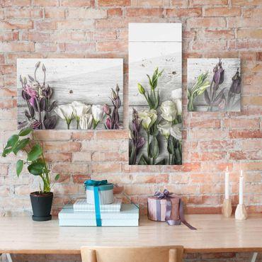 Glasbild mehrteilig - Tulpen-Rose Shabby Holzoptik Collage 3-teilig